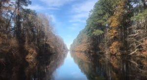 Great Dismal Swamp Canal VA Flat Roofers Chesapeake